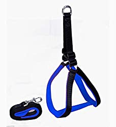 Smarty Pet High Quality Nylon with Blue Padding Dog Harness 1 inch Black - (medium)