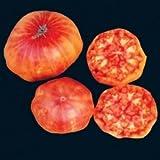 Tomate -Flame- 10 Samen 'Die Flamme'