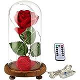 """ysber """"la belleza y la bestia"""" pétalos de rosa de seda de color rojo y luz LED con caído en campana de cristal sobre una base de madera"""