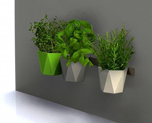 Vasi Per Piante Aromatiche.Vaso Per Piante Erbe Aromatiche Serie Heca Altezza 10 Cm Colore Verde