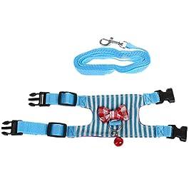 JunYe Guinzaglio per criceti guinzaglio per Furetto Guinness per Piccoli Animali – Blu M