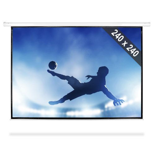 Roll-Up Home Cinema Projector Screen HDTV (240x240cm, Gain Factor: 1.0, Optimized for HDTV)