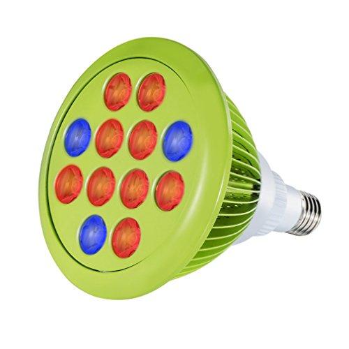 icoco-lampara-bombilla-led-para-cultivos-de-interior-24w-12led-e27-emite-luz-roja-y-azul
