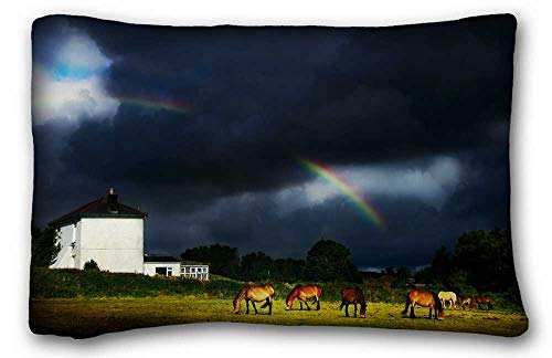 """Price comparison product image Osmykqe Custom (Animals Horses rainbow skyR) Zippered Body Pillow Case Cover Size 20""""X30"""" suitable for Twin-bed PC-Bluish-32819"""
