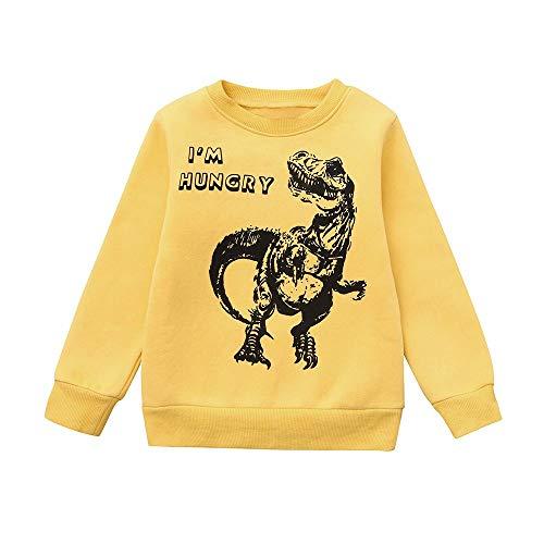 Yanhoo Kinderkleidung, Kindermode Baby Jungen Dinosaurier Brief Print Pullover Tops Herbst Winter Warme Langarm Pulli Sweatshirt Langarmshirt Oberteile Skate Park 2~7Jahre