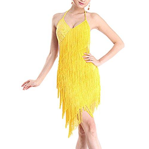 Qlan Samba Tanzkostüme für Frauen, Latein Quaste Kleid tanzen (Latin Dance Kostüm Kleider)