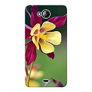 Mobile Back Cover For Micromax Canvas Play Q355 (Printed Designer Case)