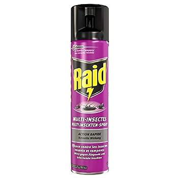 Raid Aérosol Insectes Volants et Rampants, Parfum Léger, Usage Intérieur et Extérieur, Insecticide, 400 ml