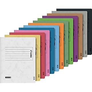 Brunnen Schnellhefter Papphefter 13 Farben extra stark 375g (13er Pack, Sortiert)