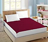 AVI Terry Cotton Waterproof Dustproof Twin Size Bed Fitted Mattress Protector for Complete