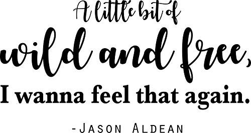 DS Inspirational Decals Jason Aldean Wand Sticker/Aufkleber-Country Music Wall Decor-50,8x 25,4cm Schwarz