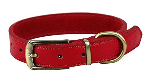 Rantow Gepolsterten Leder Classic Pet Hundehalsband, verstellbares Halsumfang 35cm bis 45cm und 2,5cm Breit, Gurt-Art Einfach zu bedienen Kopf-Halsband für Mittlere/Kleine Hunde (Rot) -