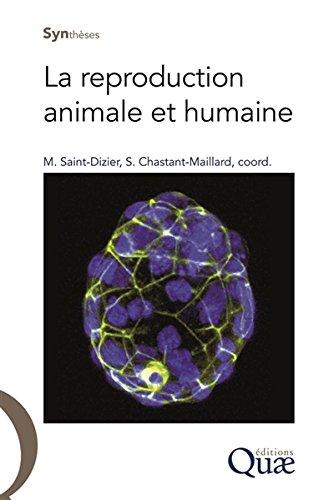 La reproduction animale et humaine