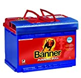 Banner Campingartikel Vliesbatterie Running Bull...