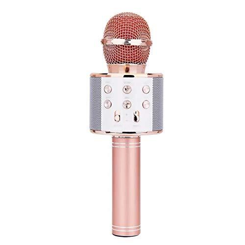 EEM Micrófono inalámbrico Karaok