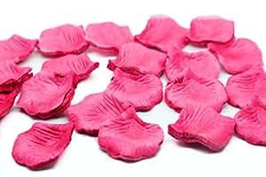 DRFUNDA 1000 petali di Rose ideale per matrimoni con fiori decorativi (Rosso)