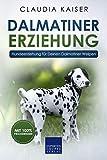Dalmatiner Erziehung: Hundeerziehung für Deinen Dalmatiner Welpen