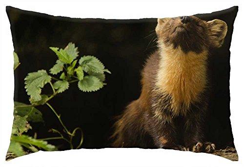 irocket-small-animals-frette-animal-throw-pillow-cover-16-x-24-40cm-x-60cm