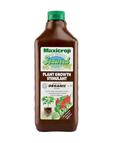 Maxicrop POPGS61L Original Seaweed Extract, 1 Litreitre, Brown