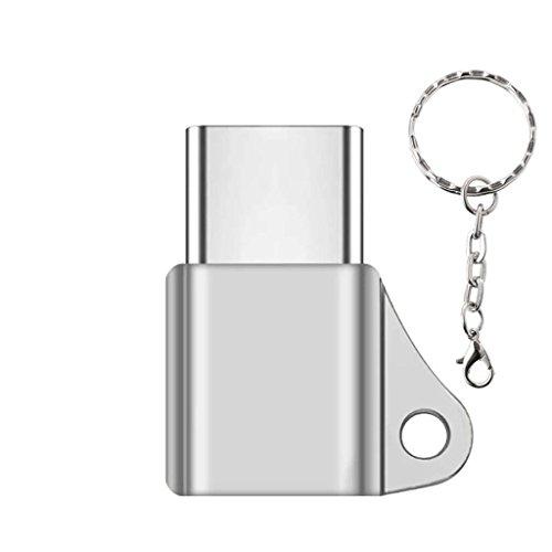BULAGE USB C 3.1 Typ C Stecker auf Micro USB Buchse Konverter Stecker Schlüsselbund für Telefon (220v-c-typ-konverter)