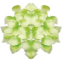 Lote/Conjunto de 12 Piezas - Lote 100 pétalos de Rosas Verdes y Blancas