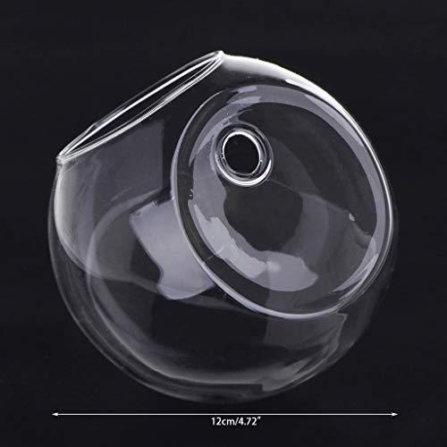 Zhangzhiyu Sarora - Jarrón Cristal Colgar Pared