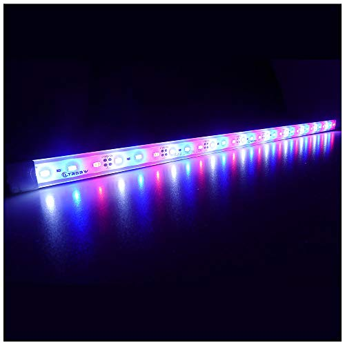 LTRGBW SMD 5730 12V DC 30LEDs Super Bright Coral Coral luci a LED per acquari - Illuminazione impermeabile in alluminio per armadi bianco freddo + blu + colore rosso (50 cm)