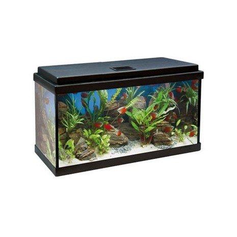 acuario-aqua-led-64-litros