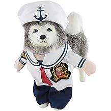 Mombebe Caraibi pirata costume Dog Pet divertente Halloween Cosplay vestiti  con cappello ec509329ce68