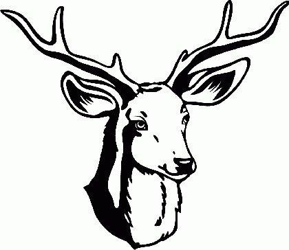 WL091 Aufkleber Reh, Hirsch, Geweih, Bambi 34x40cm - Wandtattoo Wohnzimmer fürs Kinderzimmer Wandaufkleber Wandtatoos Sticker für die Wand, Fensterbild, Tapete, Fliesen, Autoaufkleber, Türaufkleber, Auto (Auto Hirsch Geweih)