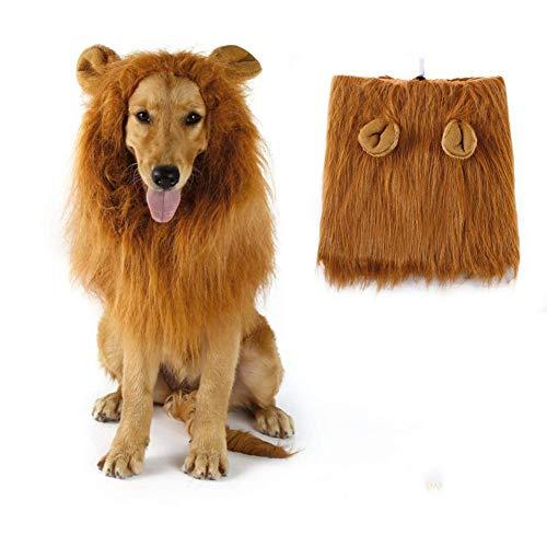 Großer Kostüm Löwenmähne Mit Hunde - ZZQ Hund Lion Mähne, Lion Mähne Perücke Kostüme für mittelgroße bis große Hunde mit Ohren, ausgefallene Löwenhaare für Halloween-Kostüme