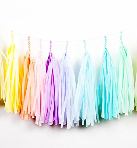 Fertige Pastell-Regenbogen-Farbene Fransen-Girlande – Tassel Girlande (Geburtstag Dekorationen Party Künstler)
