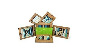 Tegu 324961 Magnetic Blocks, Future