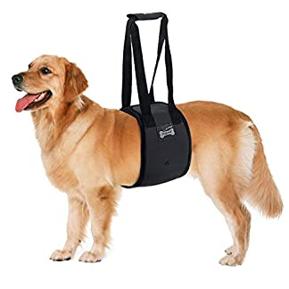 YLucky Dog Lift Support Harness with Handles, Canine Aid Lifting Sling Walking Help Strap for Front Back Legs Mobility… 7