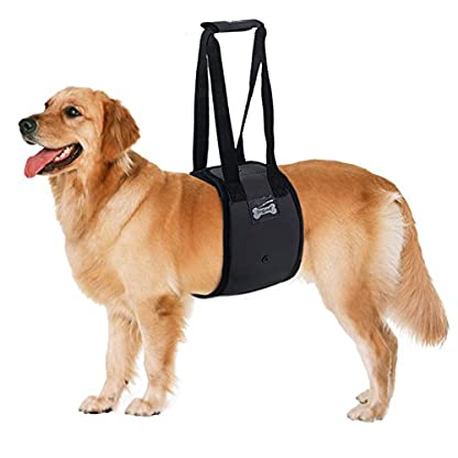 YLucky Dog Lift Support Harness with Handles, Canine Aid Lifting Sling Walking Help Strap for Front Back Legs Mobility… 1