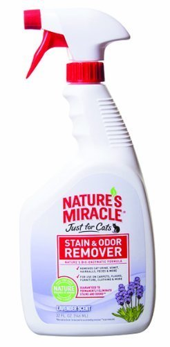 natures-miracle-just-for-cats-stain-odor-remover-32-oz-lavender-by-natures-miracle
