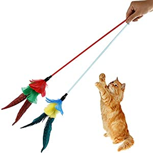 FELICIPP Multi-Plumes Teaser Et Exerciseur pour Chat Et Chaton - Baguette Chat Cat Interactive