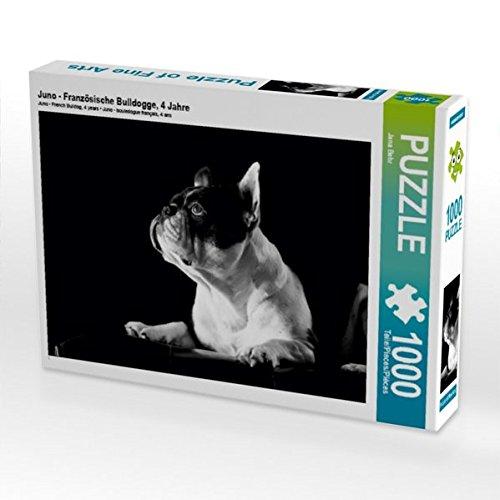 Juno - Französische Bulldogge, 4 Jahre 1000 Teile Puzzle quer (CALVENDO Tiere) (Juno 4)