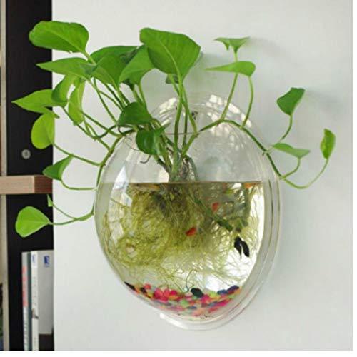 Gamloious 1x 15cm hängende Glas Blumen-Pflanzer Vase Terrarium Container Hausgarten-Kugel-Dekor