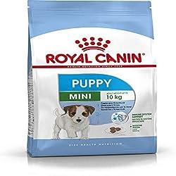 Royal Canin Mini Junior 4.0 kg
