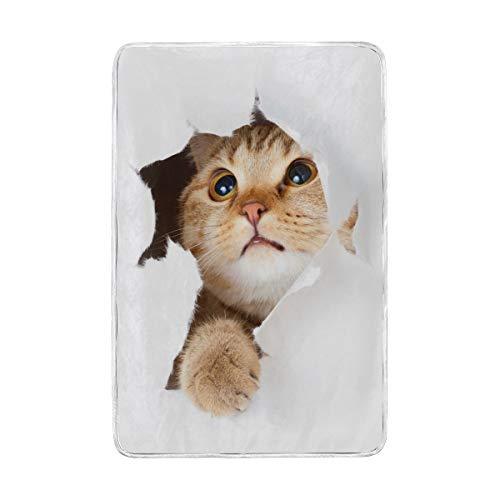 DOSHINE Zwillings-Decke, lustige süße Tier-Katze, weich, leicht, wärmend, 152,4 x 228,6 cm, für Sofa, Bett, Stuhl, Büro