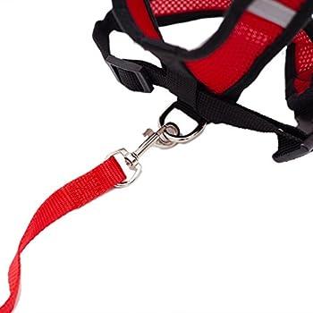 Locisne Mesh Tissu Dog Vest Harnais souple réglable confortable | Pet Chest Lead Walking Leash avec clip (Rouge, Petit)