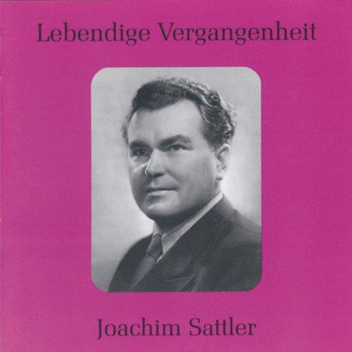 Lebendige Vergangenheit Joachim Sattler Von Joachim
