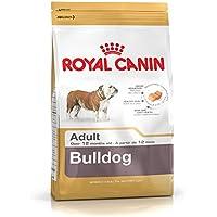 Royal Canin Bulldog Adult 12 kg, 1er Pack (1 x 12 kg)