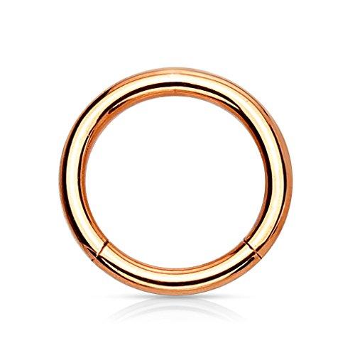 eeddoo Rosegold Steel - Segmentring 1,2-6 mm (Piercing Ring Schmuck Smooth Closure Ring Rosé)