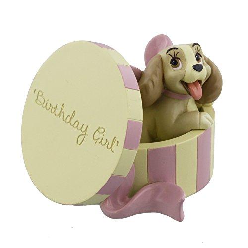 Disney Lady en Sombrero Caja de cumpleaños niña