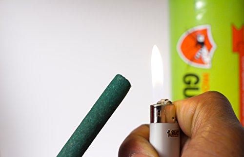 Zoom IMG-5 mosquito guard incenso repellente 100