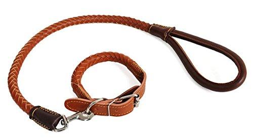 fsosoo-leine-hund-leine-kabelbaum-kragen-walking-training-flexi-erkunden-sie-langlebig-und-handmade-