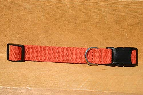 The Good Dog Company 2,5cm groß Burnt Orange 100% Hanf Halsband -