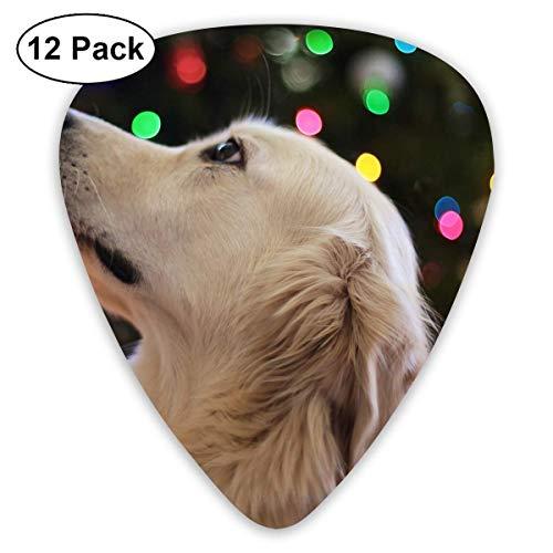 Adorable Bokeh Christmas Tree Cute Dog Golden Retriever Guitar Picks - 12 pack -